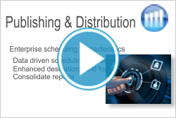 SAP Analysis Office Publishing & Distribution Definitions